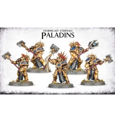 SCE PALADINS Citadel