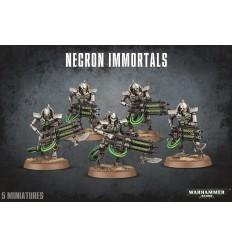 Necron Immortals Citadel