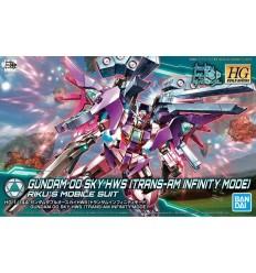 Gundam 00 Sky HWS Trans-Am Infinity Ver HG Bandai