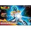 Broly Figure Full Power Rise Bandai